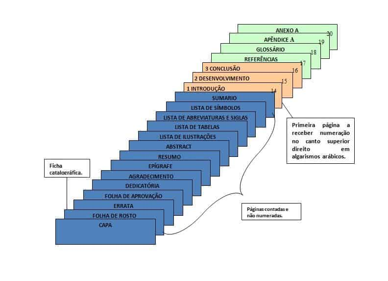 estrutura e numeração de paginas de um tcc