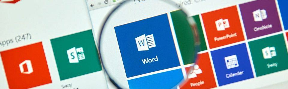 icone do ms word