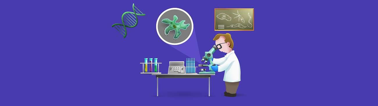 banner relatório científico