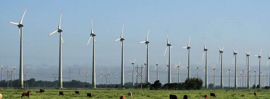 energia eólica TCC